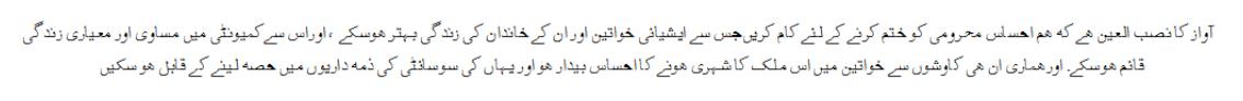 Urdu Vision 2